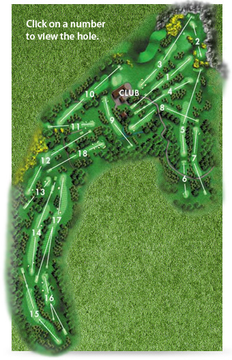 Cairndhu Golf Course Layout