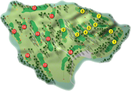 Delgany Golf Course Layout