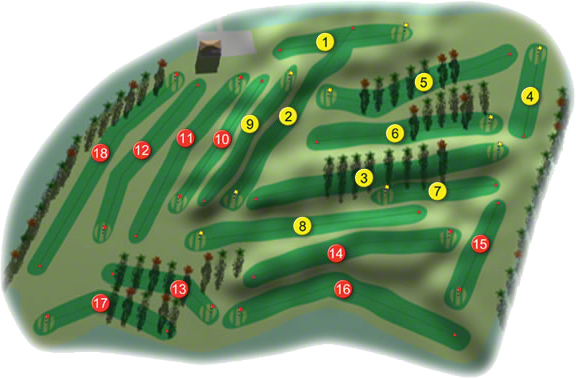Douglas Golf Course Layout