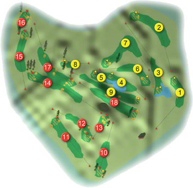 Gort Golf Course Layout