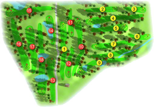 Newbridge Golf Course Layout