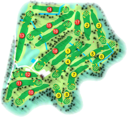 Old Conna Golf Course Layout