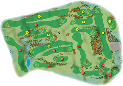 Scrabo Golf Course Layout