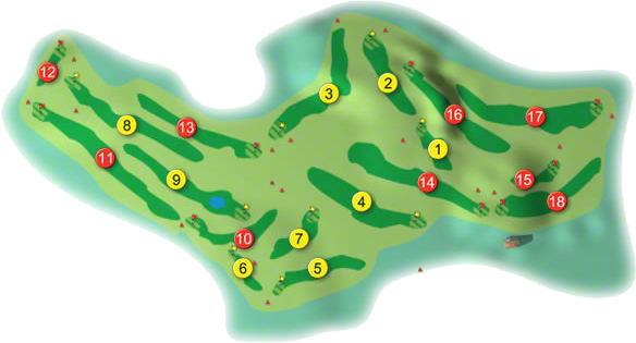 Wexford Golf Course Layout
