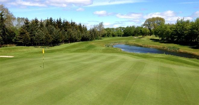 Newbridge golf course Kildare